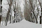Snowshoeing From Laklouk to Ehmej (Wardiyet Ehmej)
