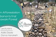 Urban Afforestation Lebanon's first Miyawaki Forest