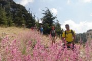 HIKING EL SHOUF CEDARS ::: BAROUK - MAASER with Sports 4 Life