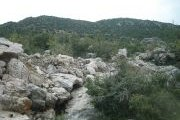 OBBA Jouz River Cleaning Campaign - Tannourine Camp