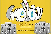 Themed Parties at Mellow Bar