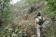 Hiking in Dlebta with Lebanese Adventure