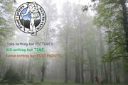 Charity Hiking in Qamou3a - Ghabet El-3othor with Footprints Nature Club