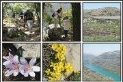 Jabal Moussa Sannine Hiking Trip with Blue Carrot