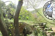 Hiking in Nahr El-Jouz with the Footprints Nature Club
