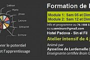 BRAIN GYM - Atelier intensif