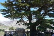 HIKING ARZ TANNOURINE with Sports4Life