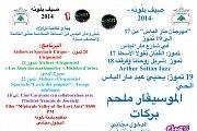 Sayf Ballouneh 2014 - Mar Elias Festival, Ballouneh