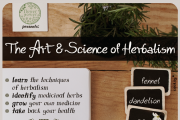 The Art & Science of Herbalism: Beginner Herbalism Course