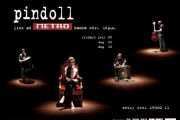 """""""Pindoll"""" in the Metro"""
