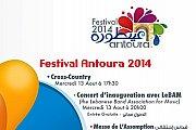 Antoura Festival 2014
