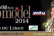 Miss World Next Top Model 2014