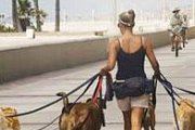 National Dog Day Beirut 2014 (Biggest Dog Walk in Beirut Downtown)
