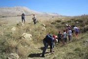 Fossils picking in the mountains! Toward Bakish and Baskinta with Neoskids