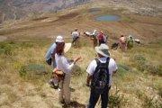 Randonnée à Harissa (Tannourine) avec le Club des Vieux Sentiers