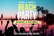 Animals Lebanon Beach Party
