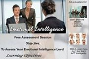 Emotional Intelligence Assessment Session by Dr. Fadi Hashem