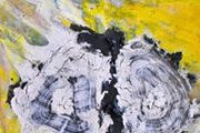 'Natural Entropy' by Dario Alvarez Basso