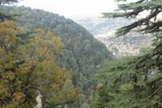 Hiking in Ehden with Dale Corazon on the Reserve