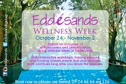 Wellness Week Fall 2014