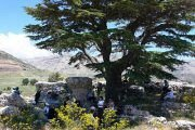 Hiking in Arz Tannourine with Sports4Life