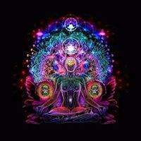 Prana Vidya: Awareness and Knowledge of Energy trough the Teachings
