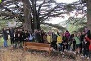 Barouk Cedar Reserve Hike with Adventures in Lebanon