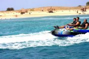 Palm Islands (Jazirit Al Aranib) with Adventures in Lebanon