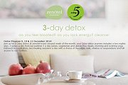Detox Retreat at Zenotel