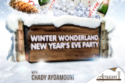 WINTER WONDERLAND NEW YEAR'S EVE PARTY