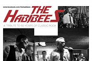 THE HABIBEES - Live @ NOVA CLUB (With Internet Society Lebanon)