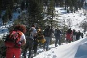 Ehden Reserve Snowshoeing with Vamos Todos