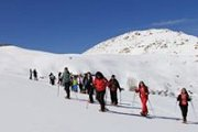 SNOWSHOEING IN AIN ZHALTA  RESERVE WITH WALKLEB