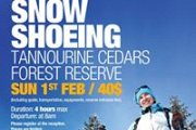 SNOW SHOEING at Tannourine Cedars Reserve with Fitness Zone