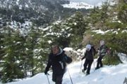 """Collection of ravines"" - Snowshoeing Tannourine reserve with the Wolves Clan"