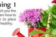SkillPill: Home Gardening 1