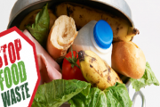 """FoodBlessed FREE """"Food Waste Management at the Household"""" Awareness Session"""