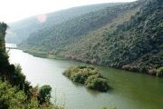 Trip to Oyoun Samak