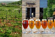 The Art of Wine and Beer Making - Batroun Tour & Tastings with Lunch