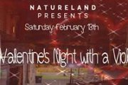 Valentine's Night with a Violinist at Natureland