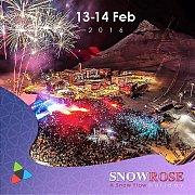 Snow Rose Festivities