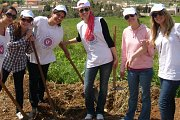Tree Planting (Amel Association International)