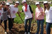 Tree Planting (Amel Association International)
