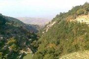 Hiking Kfarhabou With Bee Happy