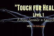 "Touch for Health"" Level 1 (Basic Seminar in Kinesiology)"