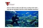 Diving Trip to Sharm el Sheikh with Atlantis Diving College