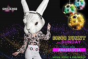 Disco Bunny at Showcase Jounieh