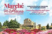 Marché aux fleurs, oiseaux et produits traditionnels - Byblos 2016