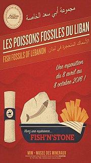 Les Poissons Fossiles du Liban - Exposition au MIM - Musée des Mineraux