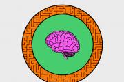 The Brain: A Secret History / Broken Brains
